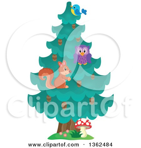 Squirrel, Owl and Bluebird in an Evergreen Tree Posters, Art Prints
