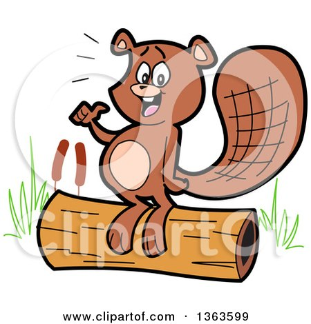 Clipart of a Cartoon Happy Beaver Giving a Thumb up and Standing on a Log - Royalty Free Vector Illustration by Clip Art Mascots