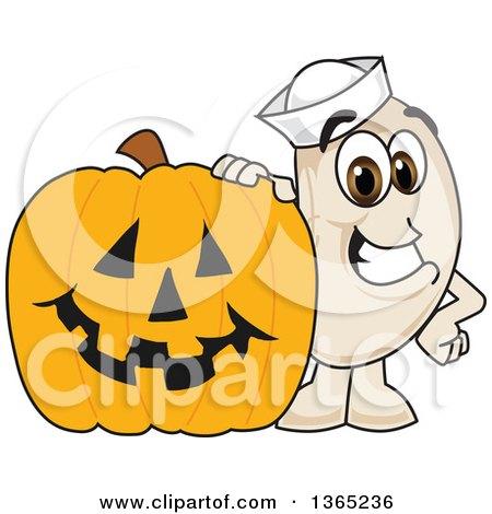 Clipart of a Navy Bean Mascot Character by a Halloween Jackolantern Pumpkin - Royalty Free Vector Illustration by Toons4Biz