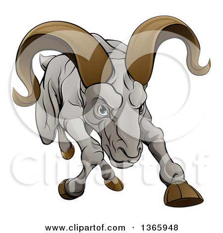 Clipart of a Cartoon Tough Angry Ram Sheep Charging Forward - Royalty Free Vector Illustration by AtStockIllustration