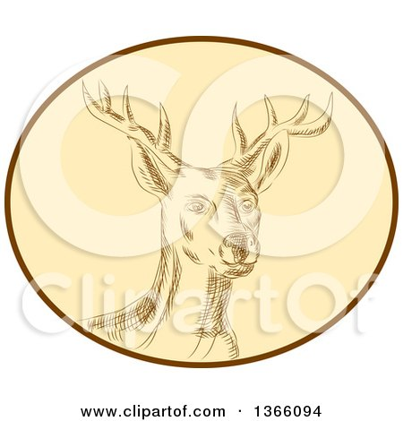 Clipart of a Retro Sketched or Engraved Red Stag Deer Buck in a Brown and Tan Oval - Royalty Free Vector Illustration by patrimonio