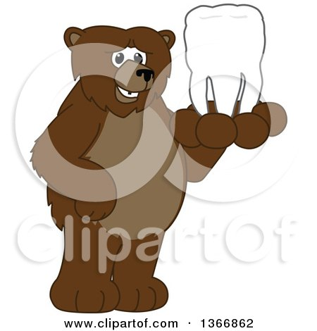 Clipart of a Grizzly Bear School Mascot Character Holding a Tooth - Royalty Free Vector Illustration by Toons4Biz