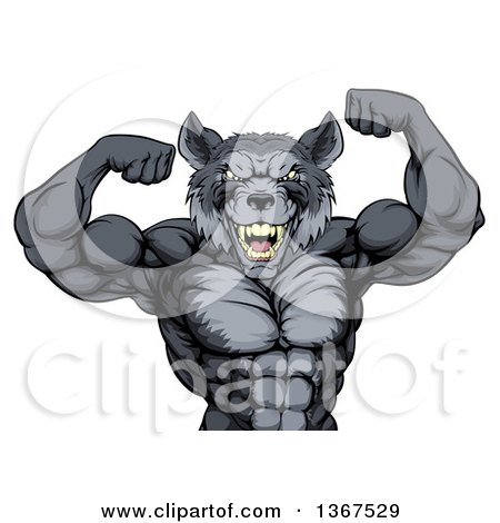Clipart of a Fierce Muscular Gray Wolf Man Mascot Flexing His Muscles, from the Waist up - Royalty Free Vector Illustration by AtStockIllustration