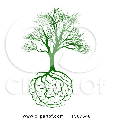 Clipart of a Green Bare Tree with Brain Roots - Royalty Free Vector Illustration by AtStockIllustration