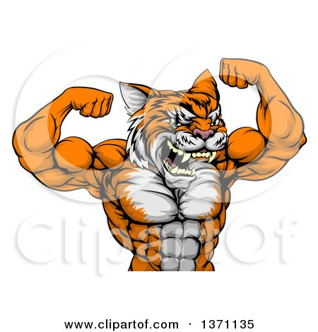 Clipart of a Vicious Tough Tiger Man Flexing His Big Muscles - Royalty Free Vector Illustration by AtStockIllustration