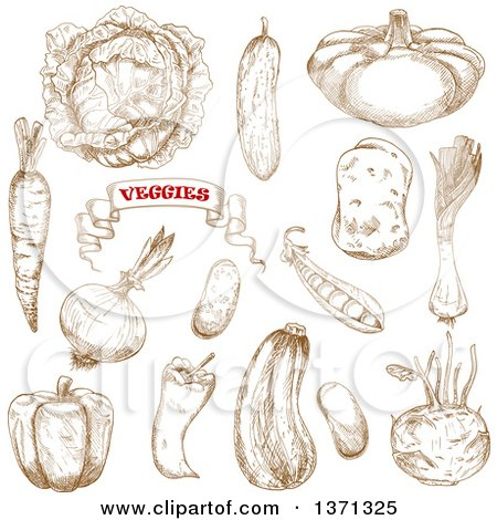 Clipart of Brown Sketched Vegetables - Royalty Free Vector Illustration by Vector Tradition SM