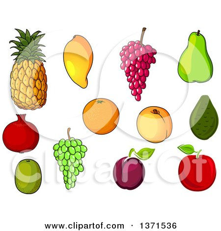 Clipart of Fruits - Royalty Free Vector Illustration by Vector Tradition SM