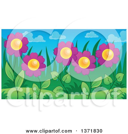 Clipart of a Garden of Purple Daisy Flowers - Royalty Free Vector Illustration by visekart