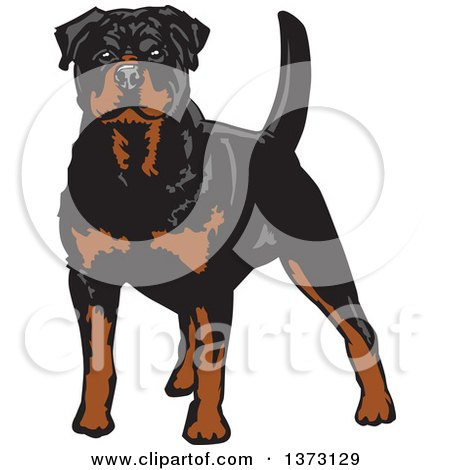 Clipart of a Standing Alert Rottweiler Dog - Royalty Free Vector Illustration by David Rey