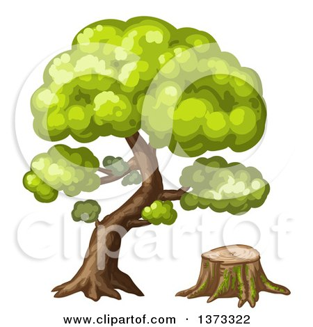 Clipart of a Mature Tree and Stump - Royalty Free Vector Illustration by merlinul