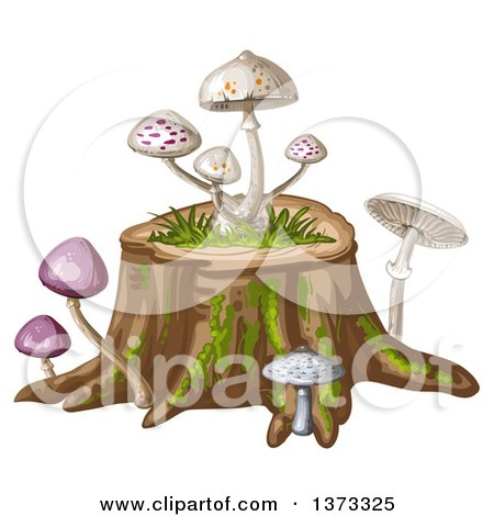 Clipart of Different Mushrooms on a Tree Stump - Royalty Free Vector Illustration by merlinul