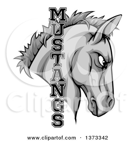 Clipart of a Gray Mustang Horse Mascot with Text - Royalty Free Vector Illustration by AtStockIllustration