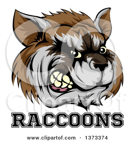 Clipart of a Snarling Aggressive Raccoon Mascot Head and Text - Royalty Free Vector Illustration by AtStockIllustration