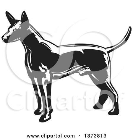 Clipart of a Black and White Woodcut Xolo Mexican Hairless Dog Facing Left - Royalty Free Vector Illustration by David Rey
