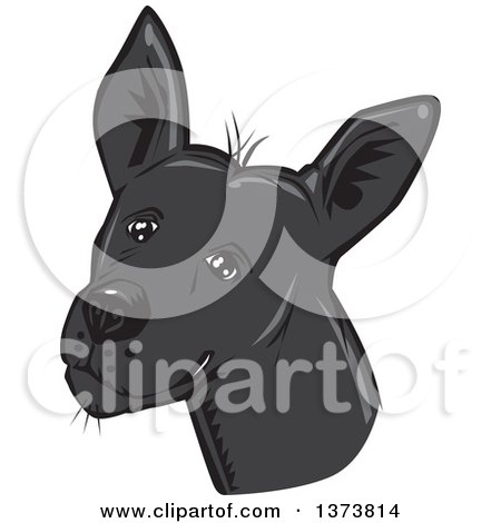 Clipart of a Black Xolo Mexican Hairless Dog Head - Royalty Free Vector Illustration by David Rey