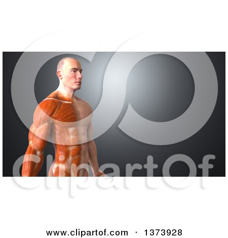 53297431d5b Clipart of a 3d Half Visible Muscle Man, on a Blue Background - Royalty Free