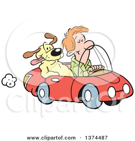 Cartoon Clipart of a Red Haired White Man Cruising in His Red Convertible Car with a Dog in the Passenger Seat - Royalty Free Vector Illustration by Johnny Sajem
