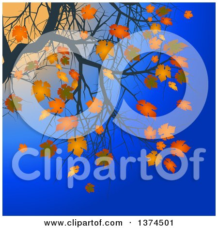Clipart of Branches of a Tree with Orange Autumn Leaves Against a Blue Sky and Sunset - Royalty Free Vector Illustration by elaineitalia