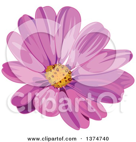 Clipart of a Pink Daisy Flower - Royalty Free Vector Illustration by Pushkin