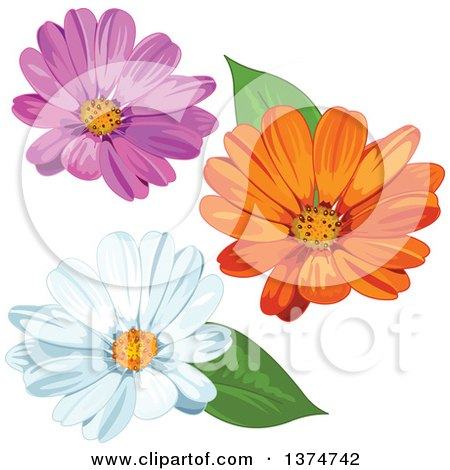 Clipart of Pink, Orange and White Daisy Flowers - Royalty Free Vector Illustration by Pushkin
