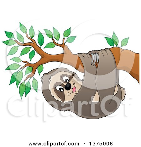 Clipart of a Happy Sloth Hanging from a Branch - Royalty Free Vector Illustration by visekart