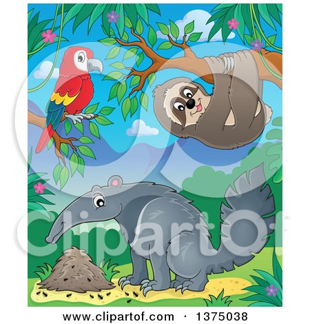 Clipart of a Parrot, Sloth and Anteater in the Jungle - Royalty Free Vector Illustration by visekart