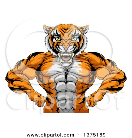 Clipart of a Tough Bodybuilder Tiger Man Flexing His Big Muscles, from the Waist up - Royalty Free Vector Illustration by AtStockIllustration