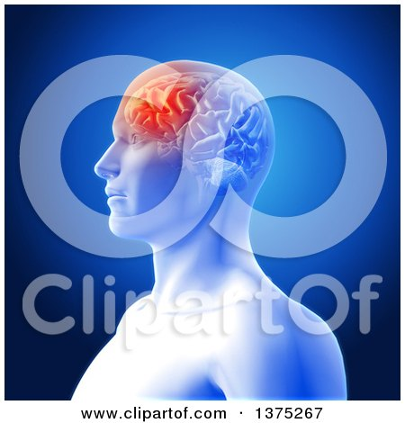Clipart of a 3d Anatomical Man with Visible Glowing Frontal Lobe of His Brain Highlighted, over Blue - Royalty Free Illustration by KJ Pargeter