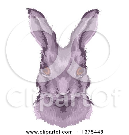 Clipart of a Bust Portrait of a Rabbit - Royalty Free Vector Illustration by BNP Design Studio