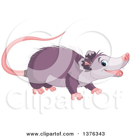 his clip art opossum with babies