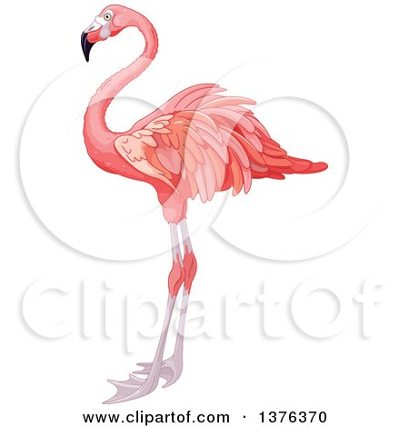 Cartoon Clipart Of A Black And White Goofy Flamingo Wading