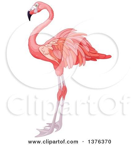 RoyaltyFree RF Pink Flamingo Clipart Illustrations Vector Graphics 1