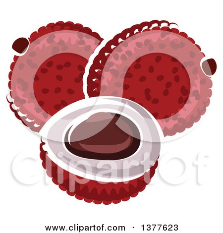 Clipart of Lychee Fruit - Royalty Free Vector Illustration by Vector Tradition SM