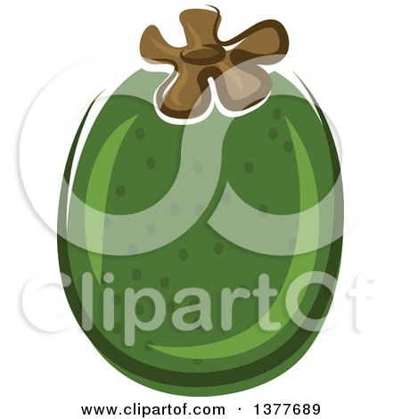 Clipart of a Pineapple Guava - Royalty Free Vector Illustration by Vector Tradition SM
