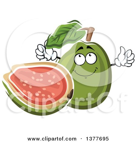 Clipart of a Whole and Halved Guava Fruit Character - Royalty Free Vector Illustration by Vector Tradition SM