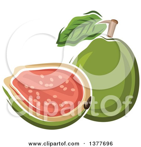 Clipart of a Whole and Halved Guava Fruit - Royalty Free Vector Illustration by Vector Tradition SM