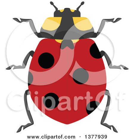 Clipart of a Ladybug - Royalty Free Vector Illustration by Vector Tradition SM