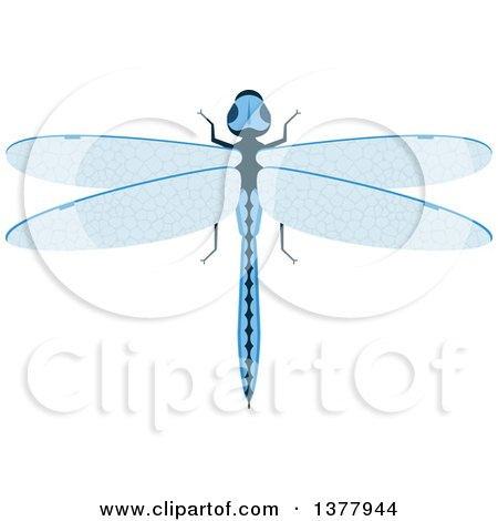 Clipart of a Blue Dragonfly - Royalty Free Vector Illustration by Vector Tradition SM