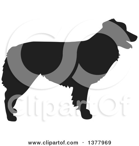 Clipart of a Black Silhouetted Australian Shepherd Dog in Profile - Royalty Free Vector Illustration by Maria Bell