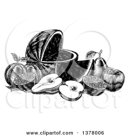 Clipart of a Vintage Black and White Woodcut Still Life of Fruit - Royalty Free Vector Illustration by AtStockIllustration
