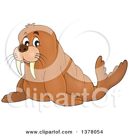 Clipart of a Happy Walrus - Royalty Free Vector Illustration by visekart