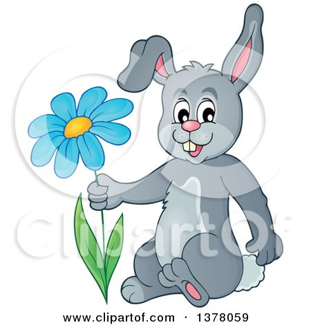 Clipart of a Happy Gray Bunny Rabbit Holding a Flower - Royalty Free Vector Illustration by visekart