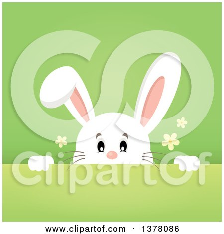 Clipart of a Happy White Bunny Rabbit Peeking over a Gradient Green Background - Royalty Free Vector Illustration by visekart