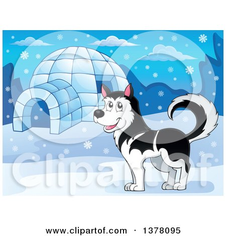 Clipart of a Happy Husky Dog by an Igloo - Royalty Free Vector Illustration by visekart