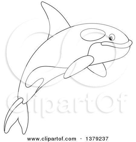 Clipart of a Black and White Cute Leaping Orca Killer Whale - Royalty Free Vector Illustration by Alex Bannykh