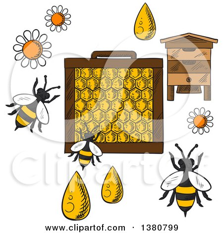 Clipart of a Sketched Beehive, Frame with Honeycombs and Bees Flying Around Flowers and Drops of Honey on Orange Background with Text Beekeeping - Royalty Free Vector Illustration by Vector Tradition SM