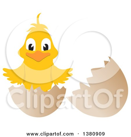 Clipart of a Happy Yellow Easter Check Hatching from an Egg - Royalty Free Vector Illustration by elaineitalia
