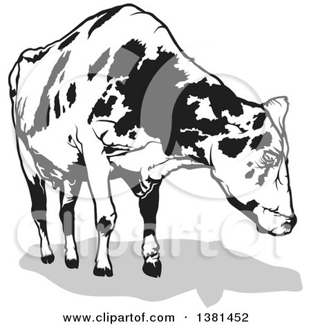 Clipart Illustration Of A Dairy Cow With Udders Facing Away By Dero