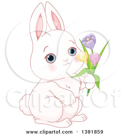 Clipart of a Cute White Bunny Rabbit Holding Spring Flowers - Royalty Free Vector Illustration by Pushkin