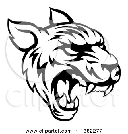Clipart of a Black and White Vicious Tiger Mascot Face Roaring - Royalty Free Vector Illustration by AtStockIllustration